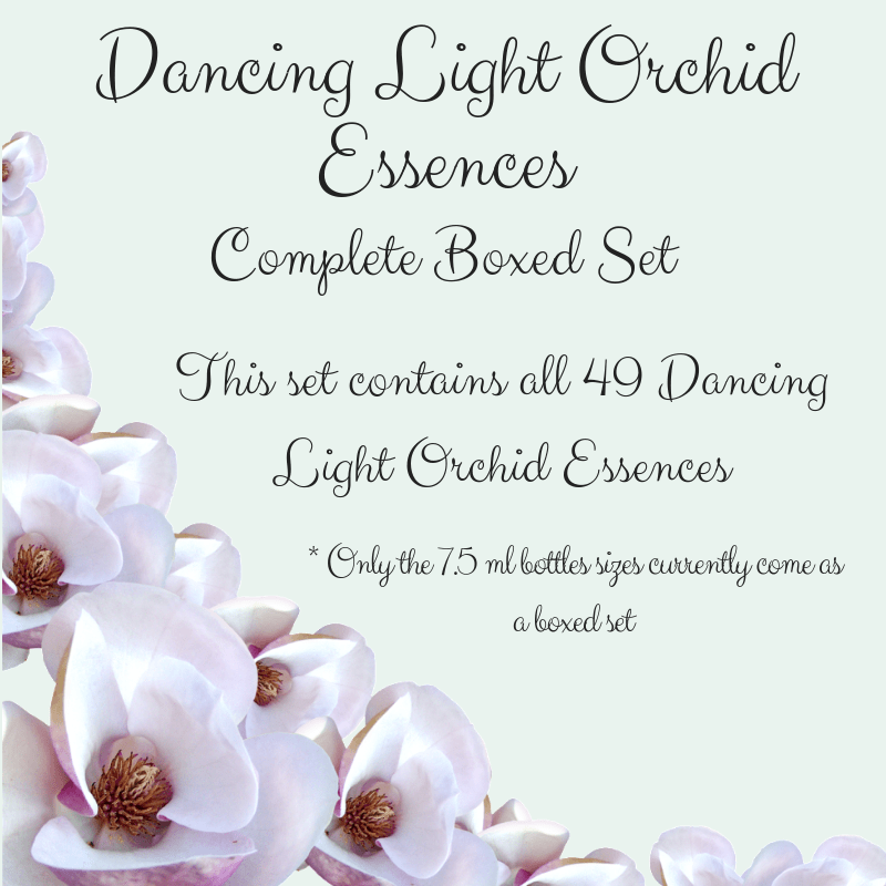 Dancing Light Orchid Essences - Complete Set