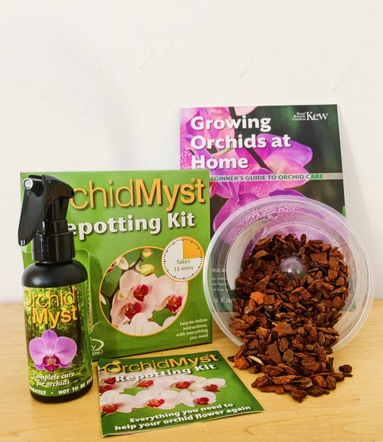 Orchid Gift Set