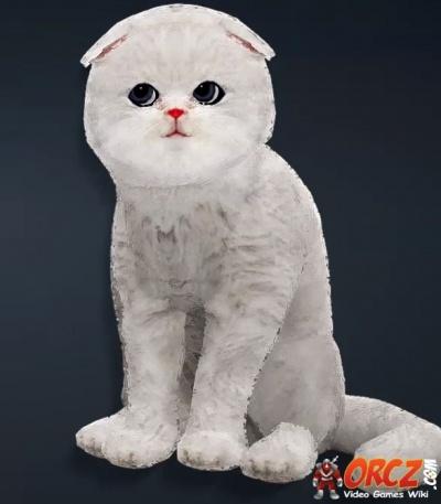 Black Desert Online Grey Moon Cat  Orczcom The Video