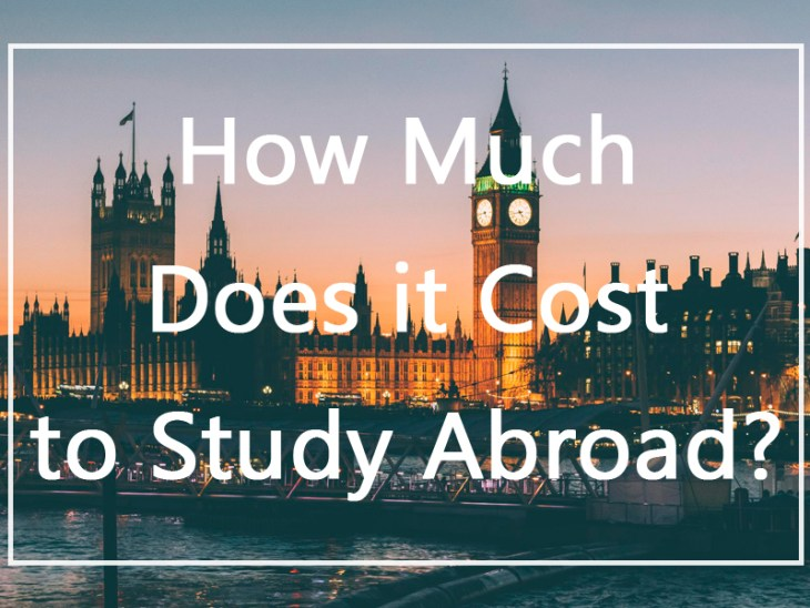 The Opportunity Cost of Study Abroad Programs: An ...