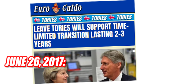 Ignore Remain Spin: Tory Leavers Support Transition