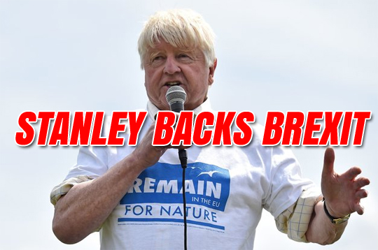Stanley Johnson Backs Brexit