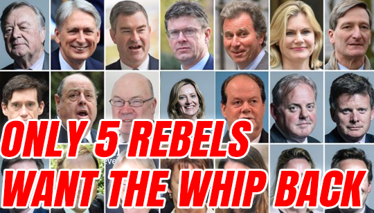 Only Five of the 21 Rebels Want to Return to Tory Fold