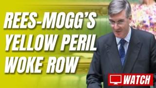 Labour & LibDems' Absurd Rees-Mogg Race Row