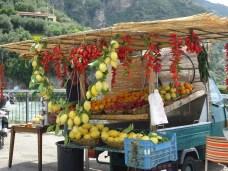 Sorrento lemons on the Amalfi Coast