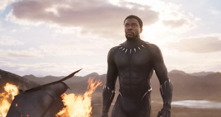 T'Challa (Chadwick Boseman) var mere end et ikon, da Black Panther (2018) udkom. Filmen endte med at indtjene mere end en milliard på verdensplan. (Foto: Disney Pictures)