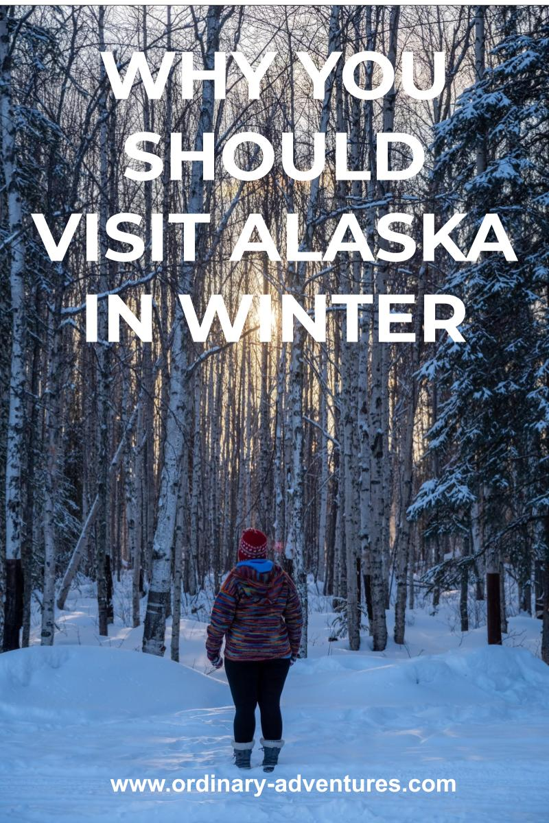 A person faces a snowy forest at sunset away from the camera. They are wearing a bright multicolored sweater and a red hat. Text reads: Why you should visit Alaska in winter