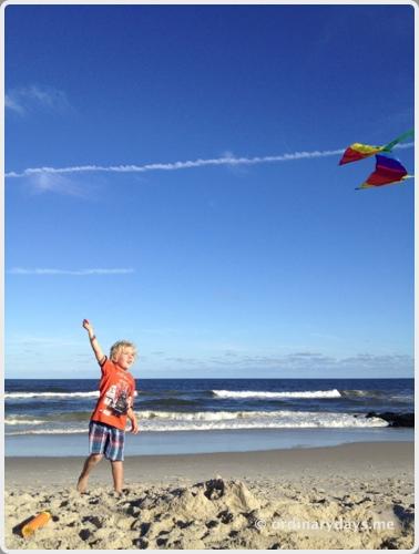Kites on Long Beach Island