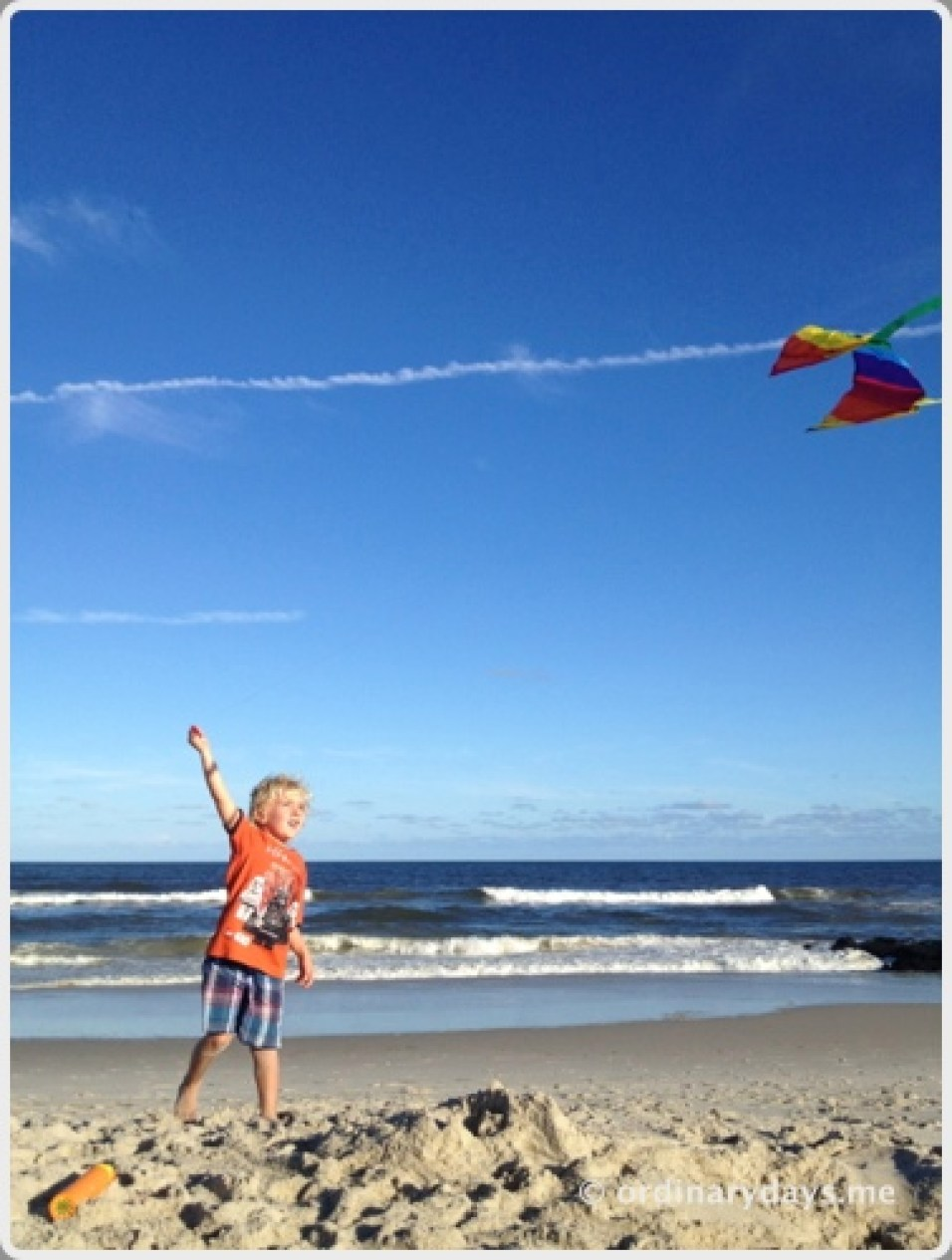 Kites on Long Beach Island