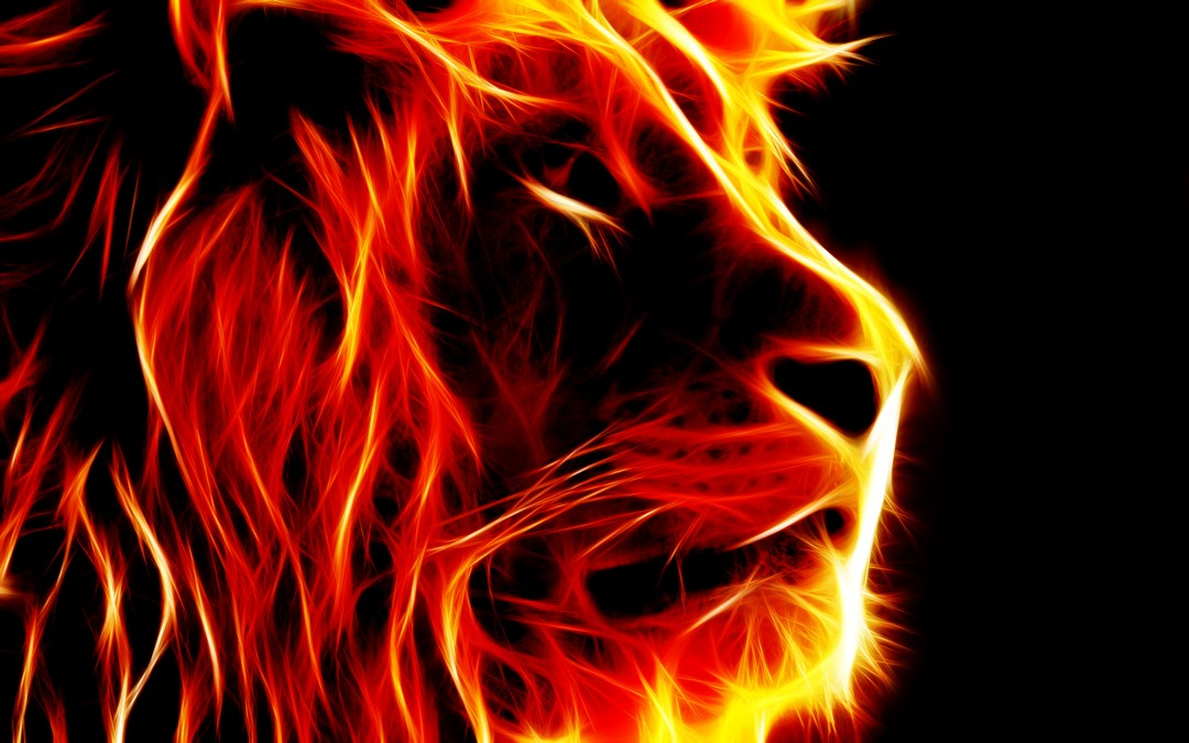 The End… The Lion and The Lamb