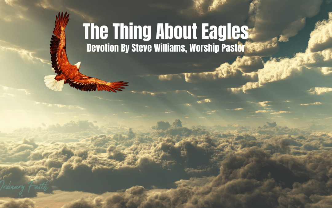 The thing About Eagles