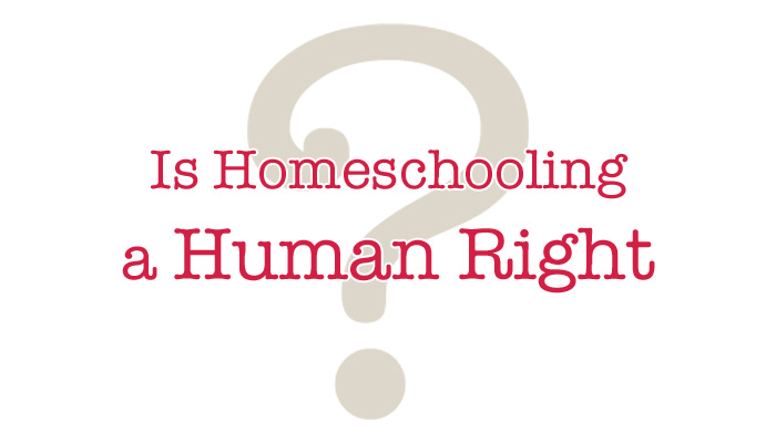 Is Homeschooling a Human Right?   Ordinary Happily Ever After