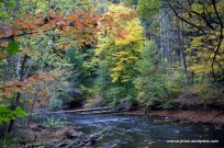 Fall On the Clear Fork