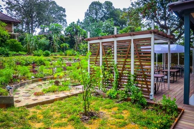 Open Farm Singapore