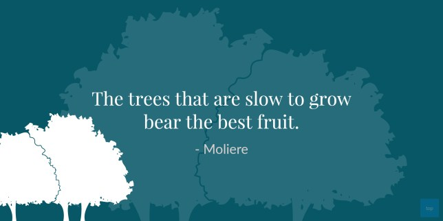 Quote : The trees that are slow to grow bear the best fruit.