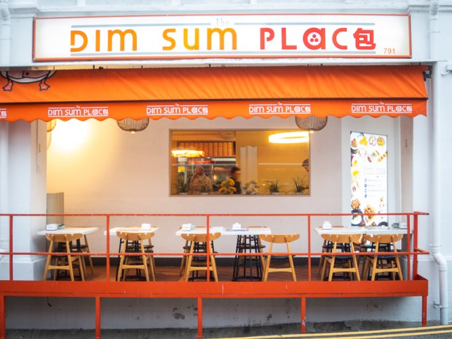 The Dim Sum Place