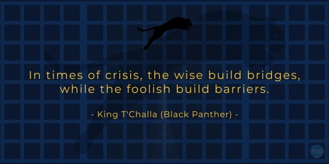 In times of crisis, the wise build bridges, while the foolish build barriers. - King T'Challa (Black Panther)