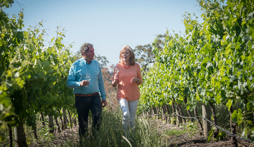 Glen and Judy from Artwine