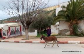 Runaway donkey.