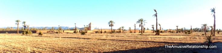 Fields post-harvest