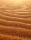 Dune patterns