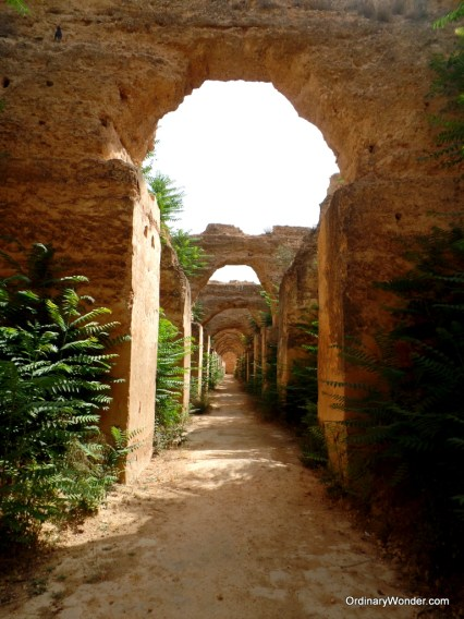 Inside the Royal Stables