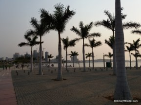Palm trees along the promenade.