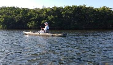 sunim-mangrove-yak001