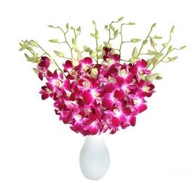 buchet-de-orhidee-exclusiv-rj6fozpv44.jpg