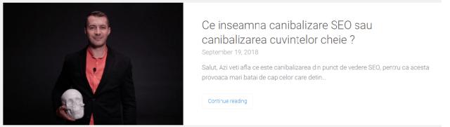 canibalizare SEO