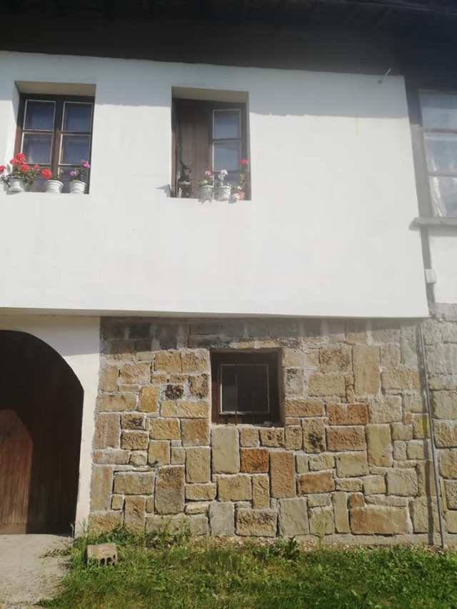 Catel la geam in Arbanasi