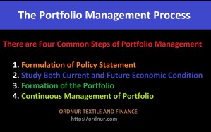 The Portfolio Management Process