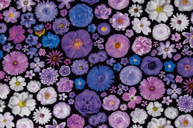 Digital Printing on Fabric: Pros, Cons + Who Is Making Digital Print Fabric Now