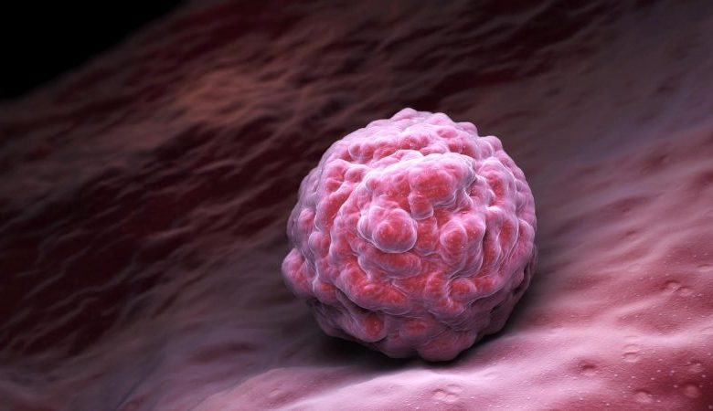 Scientists rejuvenated human cells for the first time in history