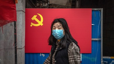 Photo of A new type of swine flu discovered in China: another pandemic is possible