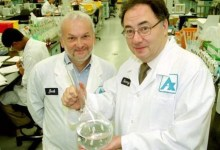 Photo of Who and why killed a major manufacturer of drugs for coronavirus?