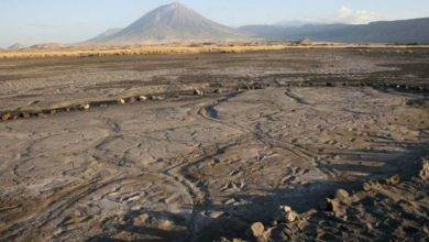 Photo of Near the volcano found the largest collection of ancient human footprints in Africa