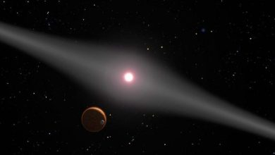 Photo of NASA has studied the elusive exoplanet hunted for 15 years