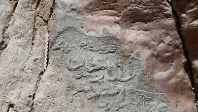 Photo of Centuries-old petroglyphs discovered in Iran