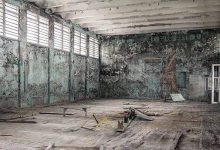 Photo of Chernobyl mold could protect the ISS from cosmic radiation