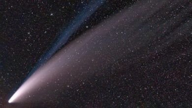 Photo of Don't miss this rare chance to see the comet with the naked eye
