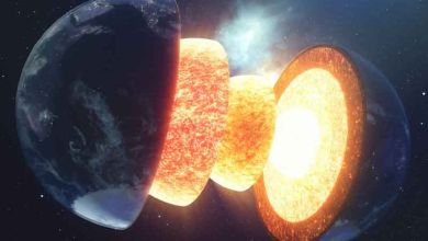 Photo of Iron and magnesium are the main elements of the planets