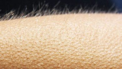 Photo of Science finally explains the cause of goosebumps