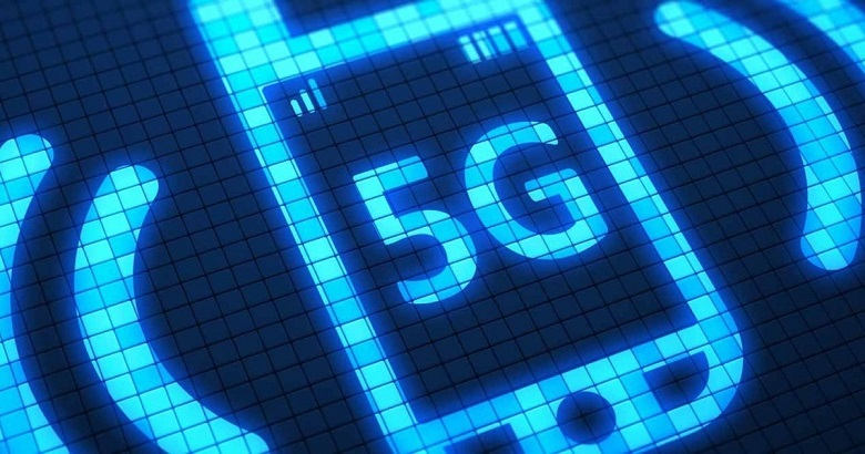 Scientists tested the harm of 5G on fish 2