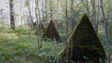 Photo of What strange pyramids are found in Russian forests