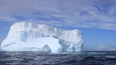Photo of Canada's last ice shelf collapses to form a city-sized iceberg