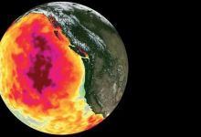 Abnormal hot bubbles massively kill life in the ocean