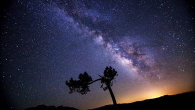 Photo of Among 10 million stars, not a single signal was found indicating an extraterrestrial civilization