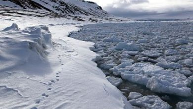 Photo of Arctic ice thinner