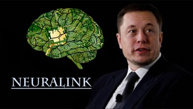 Photo of It is possible to control a person through a chip from Elon Musk